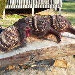 Randall Boni arte en madera (12)