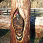 Randall Boni arte en madera (17)