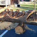 Randall Boni arte en madera (6)