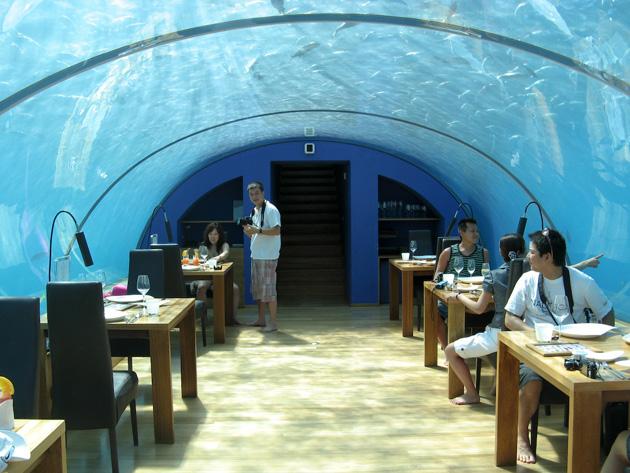 Ithaa el restaurante submarino en las maldivas blogerin for Conrad maldives rangali island resort islas maldivas