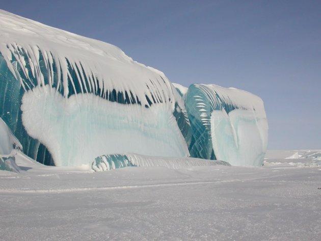 olas antartica